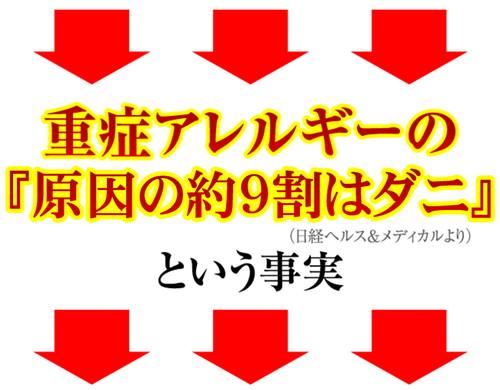 グッバイDANNY(ダニー)販促Webページ
