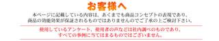 ゴキちゃんグッバイ屋敷販促Webページ(スマホ向け)