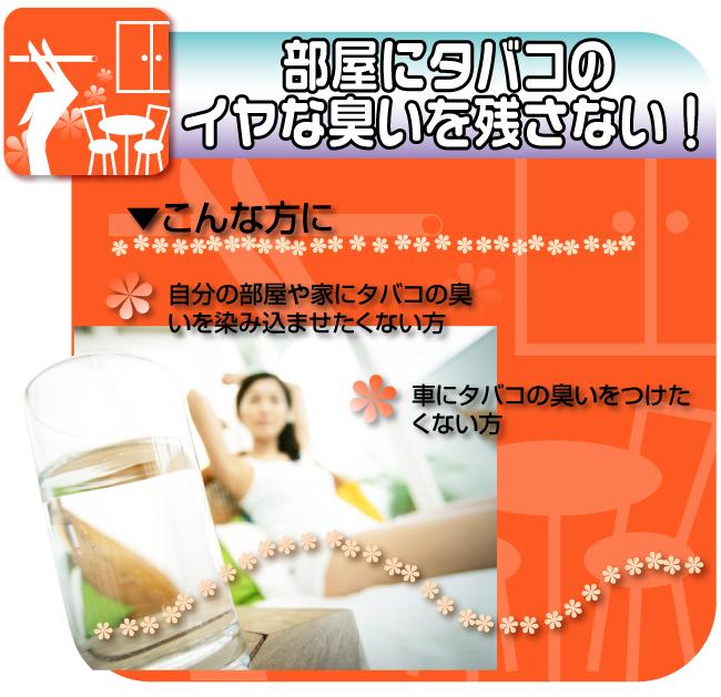 ビタクール販促Webページ01