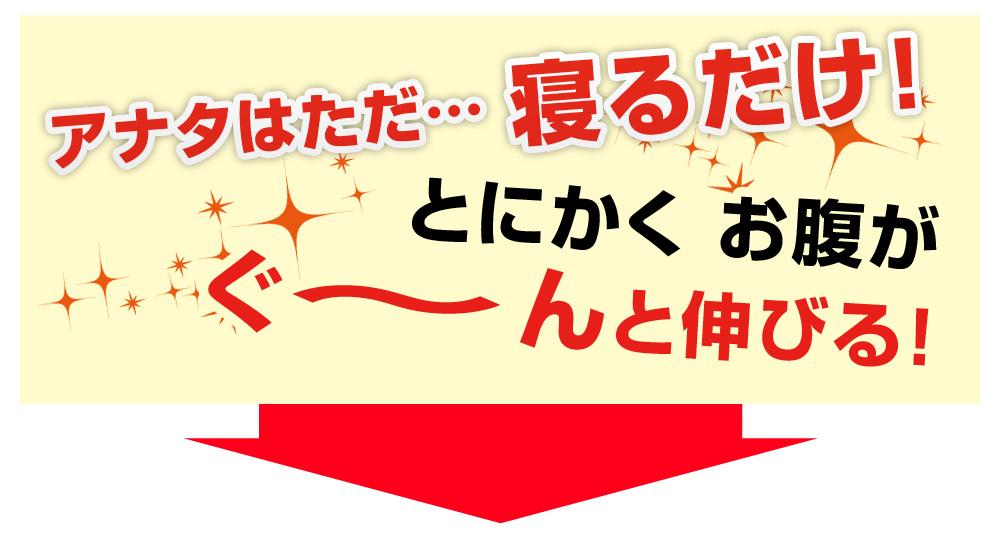 エスレッチングポール S-retching pole販促Webページ