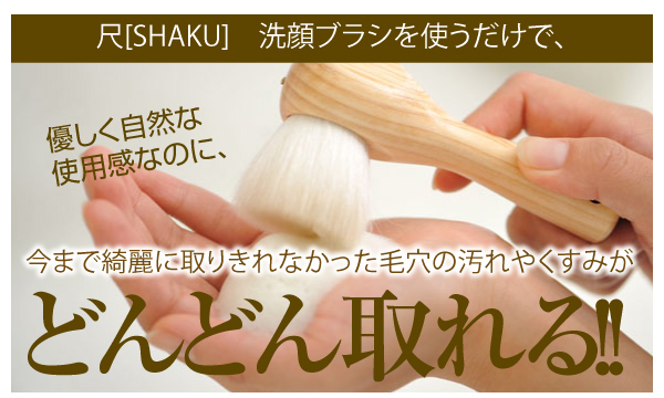 尺・洗顔ブラシ [ヒノキ]販促Webページ